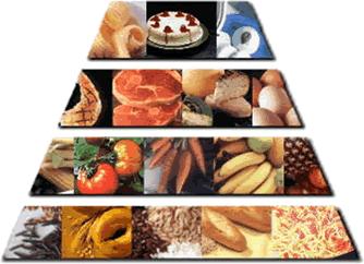 Le régime Groupe Sanguin O Calories